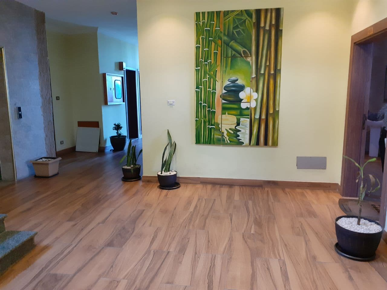 Marvelous fully furnished Two bedroom Apartment in Kassanchis for rent